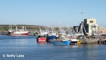 Ardglass Fishing Fleet