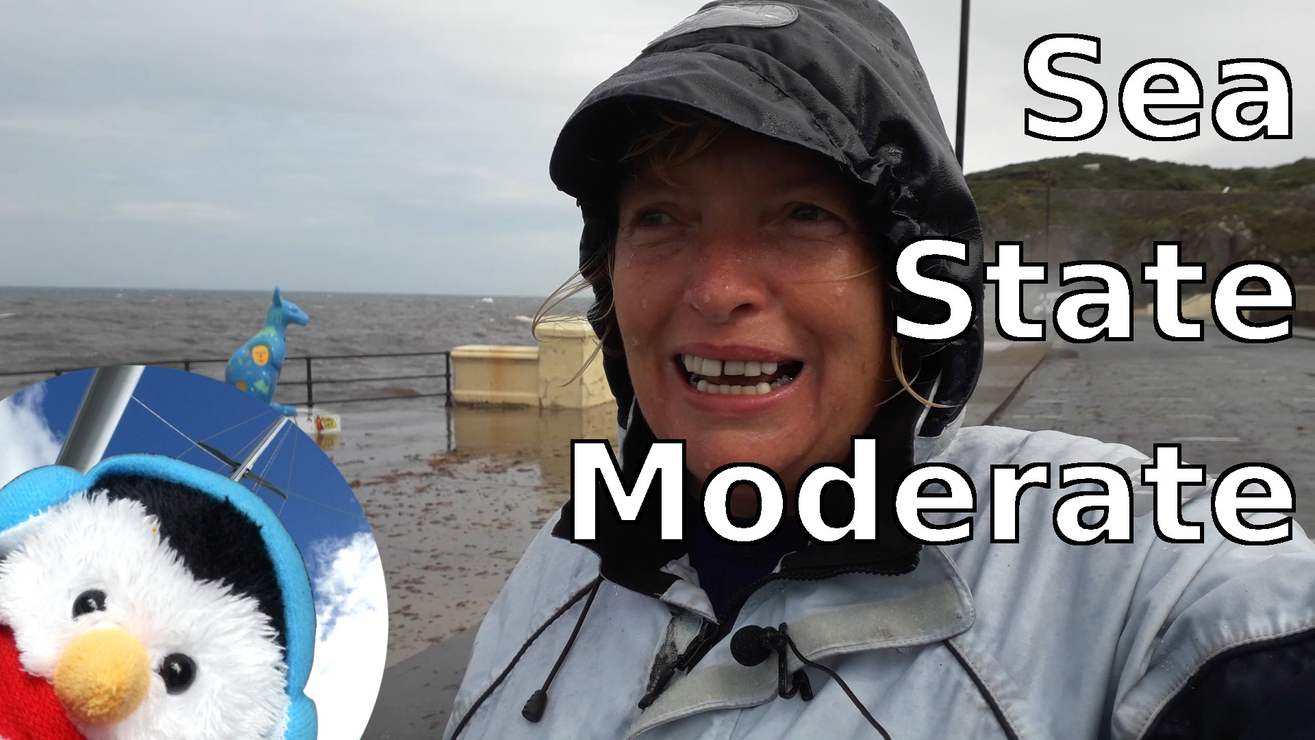 Watch our 'Sea state moderate' video and add comments etc.