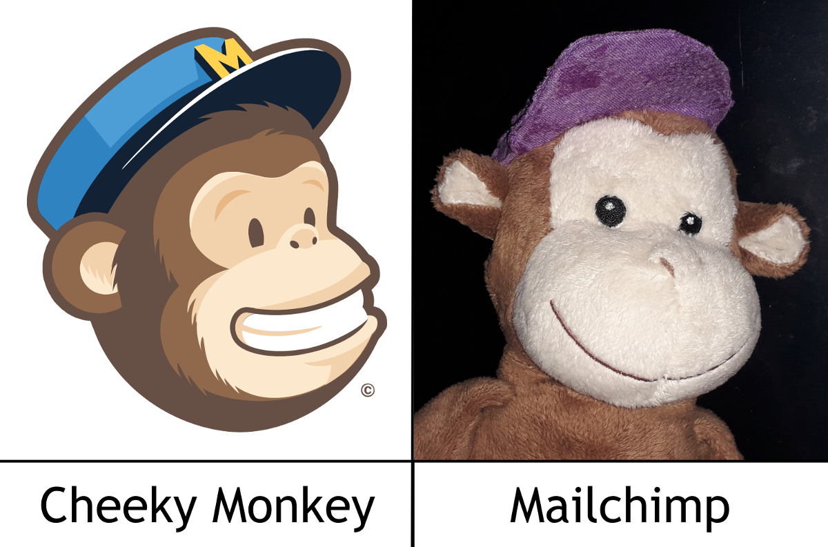 Cheeky Monkey will be using Mail Chimp for our Newsletter